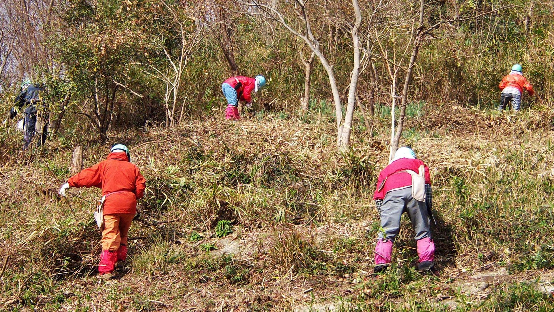 神戸の森林(もり)を守り育てる:世継山