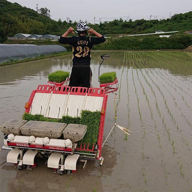 収穫の秋!連携農家の農作業を手伝ってください!
