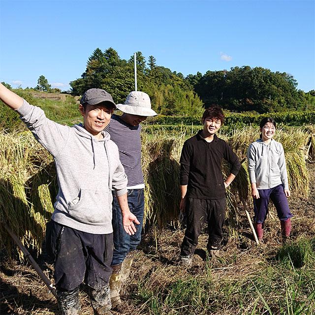 やってみぃひん?!農作業
